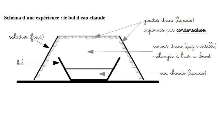 schema condensation